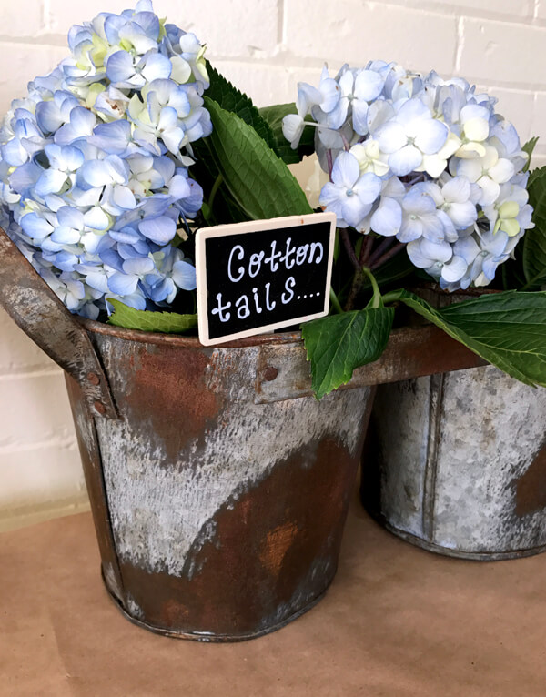 "Peter Rabbit in Mr. McGregor's Garden First Birthday Party | Halfpint Design - beautiful flowers ""cotton tails"" on display"