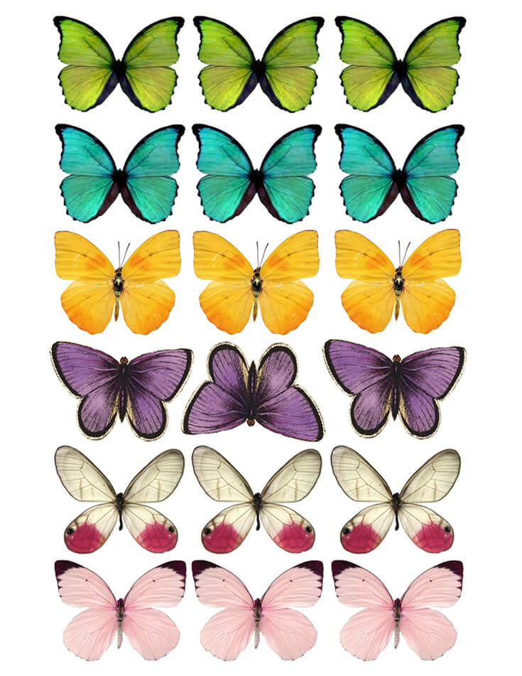 graphic about Printable Butterfly Pictures identified as Do it yourself Butterfly Celebration Desire - Absolutely free Printable - Events With A