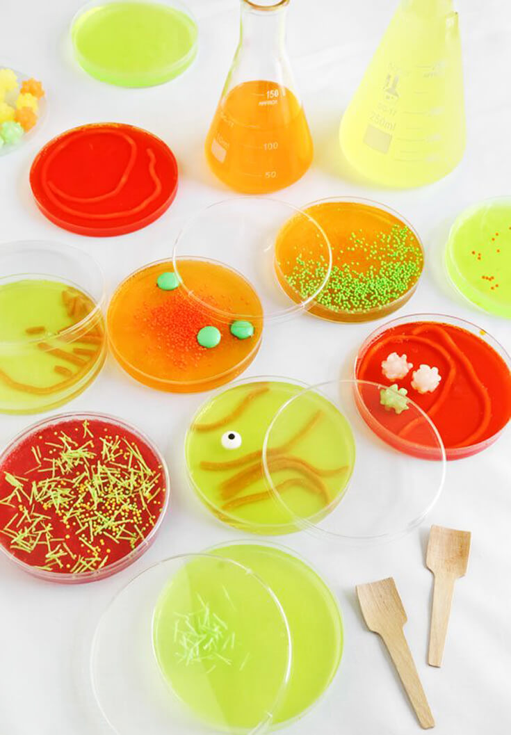 "Have them all talking about your science party. Eat Jello ""bacteria"" from a petri dish. Mad Science Party Ideas 