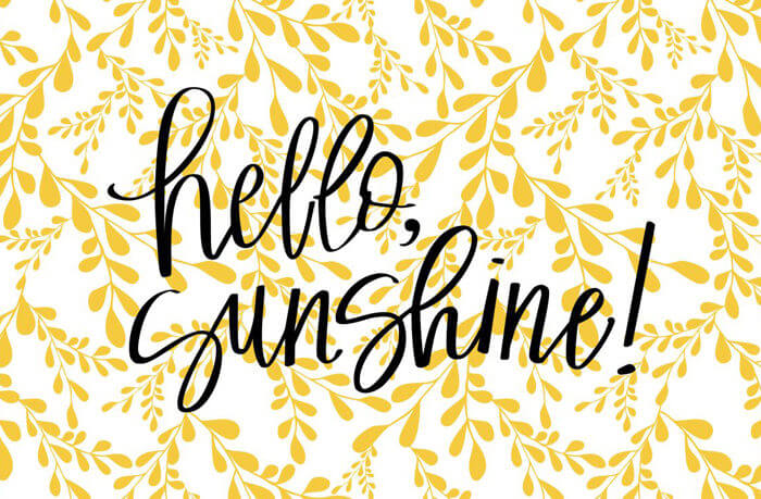 Hello Sunshine! Nice to meet you! I'd love to introduce you to 11 of my closest friends! Sunshine Blogger Award | Halfpint Design