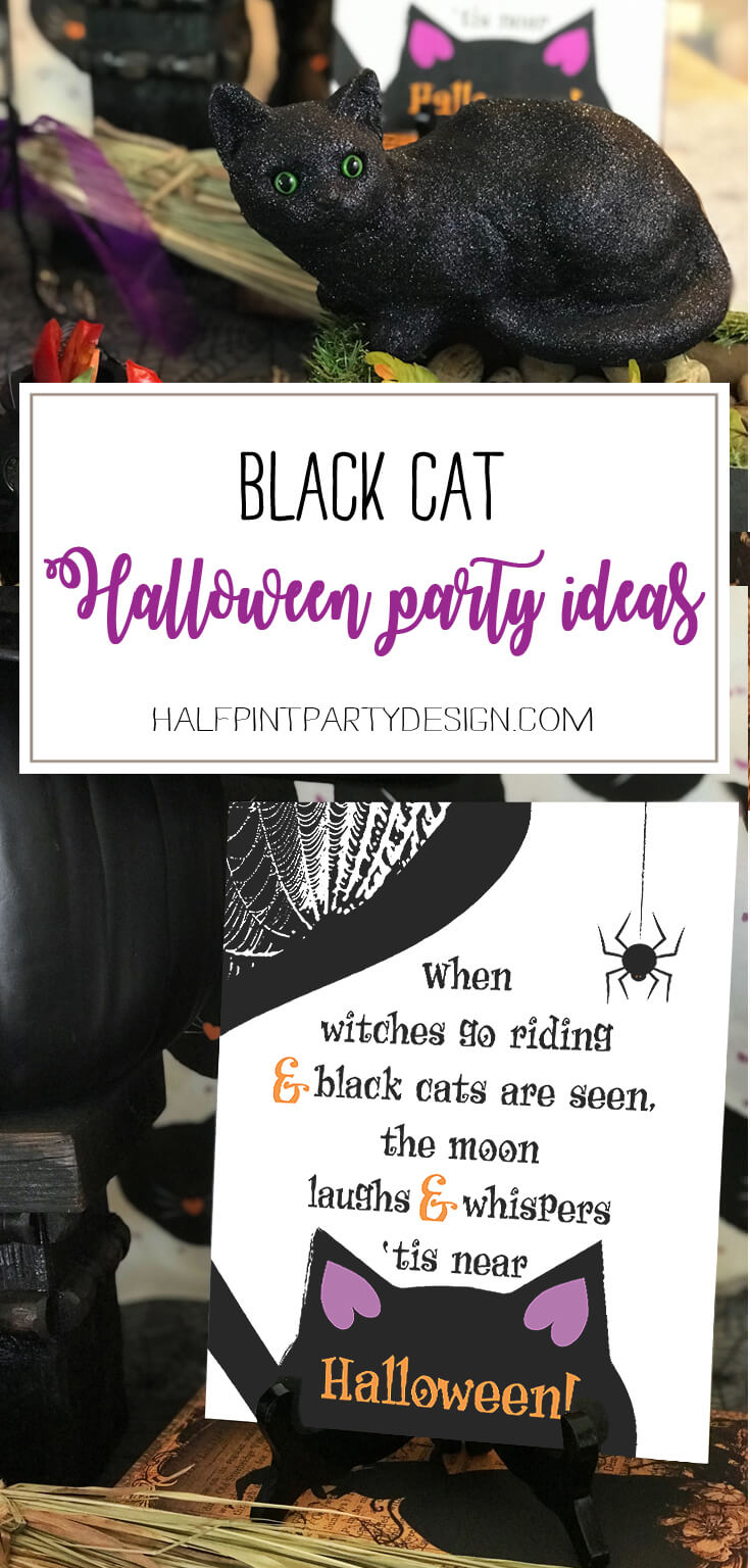 Black Cat Halloween Party Reveal - Parties With A Cause