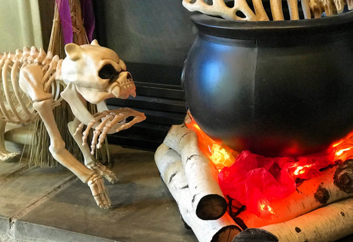 Want to make bone soup for Halloween? Create this super easy witches' cauldron with realistic flickering flames. Add bones for the finishing touch. Create an Eerie Witch's Cauldron | Halfpint Design - Halloween decorations, witch decor, faux fire, fake campfire, firelight bulbs