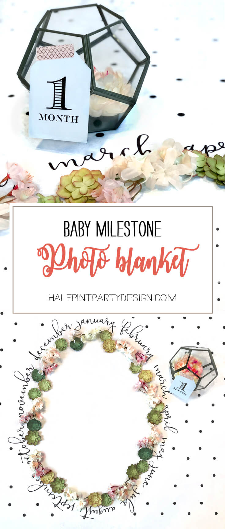 Baby Milestone Blanket photo backdrop, oval of flowers and succulents for newborn photography. Halfpint Design