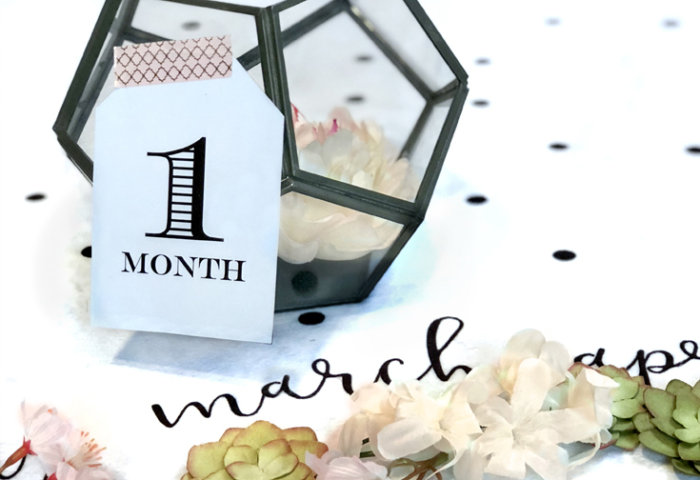 Baby Milestone Blanket photo backdrop, oval of flowers and succulents for newborn photography. Geometric terrarium with 1 month tag. Monthly milestones. Halfpint Design