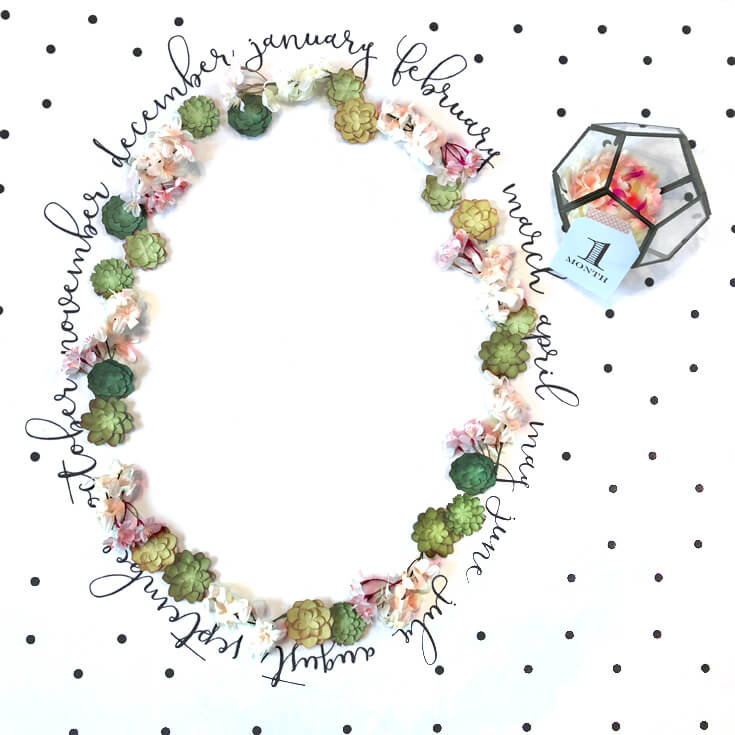 Baby Milestone Blanket photo backdrop, oval of flowers and succulents for newborn photography. Monthly milestones. Halfpint Design