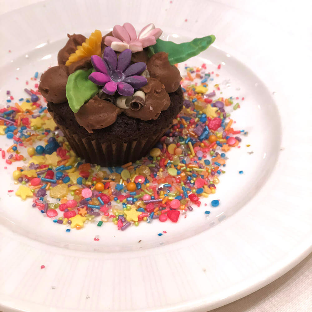 Chocolate cupcake on white plate surrounded by colorful sprinkles, topper with fondant flowers and green leaves at SNAP conference