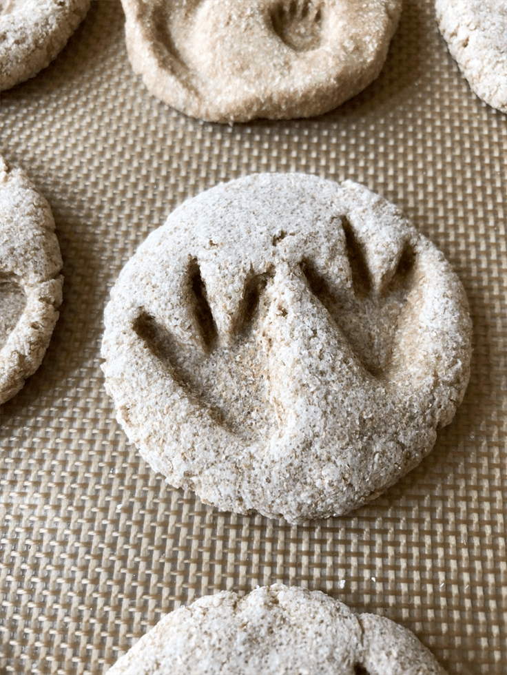 Dinosaur footprint on salt dough DIY dinosaur fossils