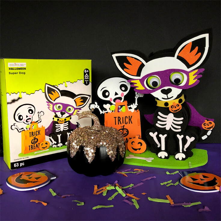 Chihuahua and skeleton simple Halloween centerpiece with box and black pumpkin