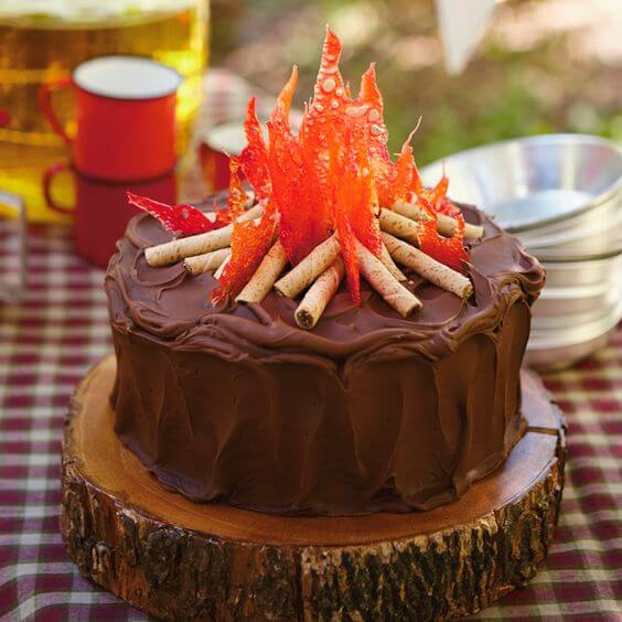 Campfire cake for a camping or lumberjack birthday party a top party trend