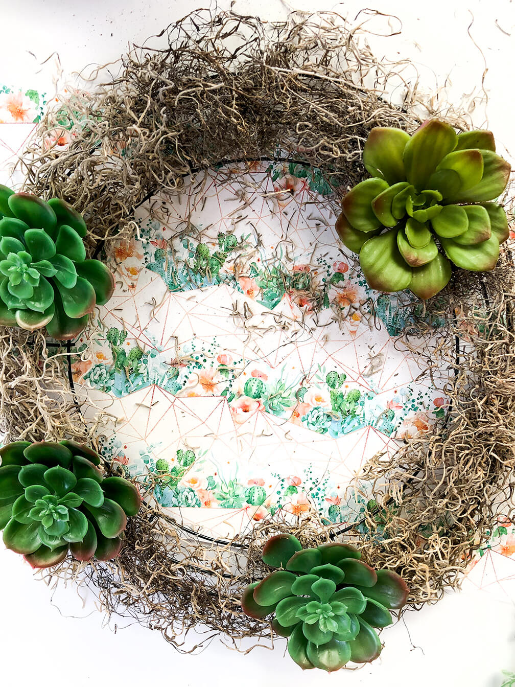 succulent wreath tutorial showing how to space large succulents