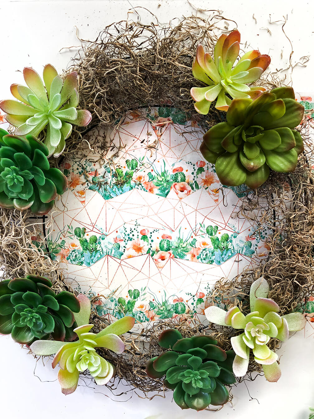 succulent wreath tutorial showing succulent placement for best color arrangement