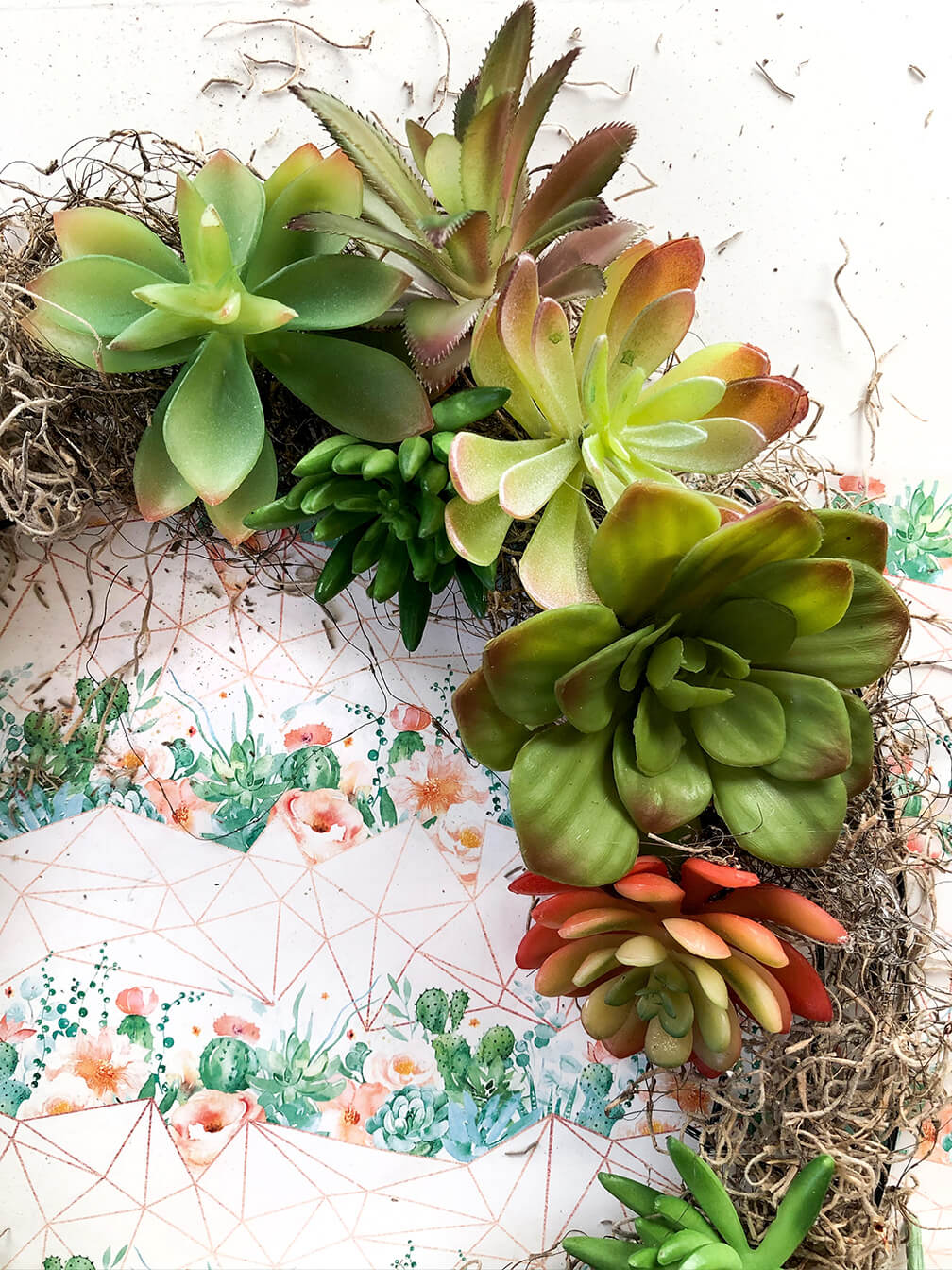 Cluster smaller plants in a succulent wreath tutorial