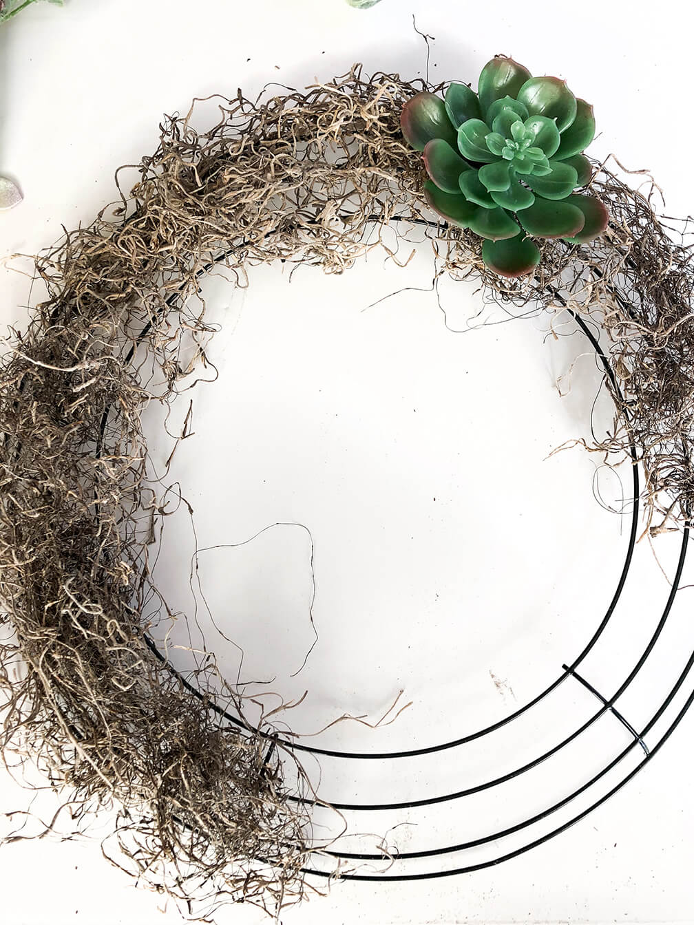 Wire wreath form filled with moss during a succulent wreath tutorial