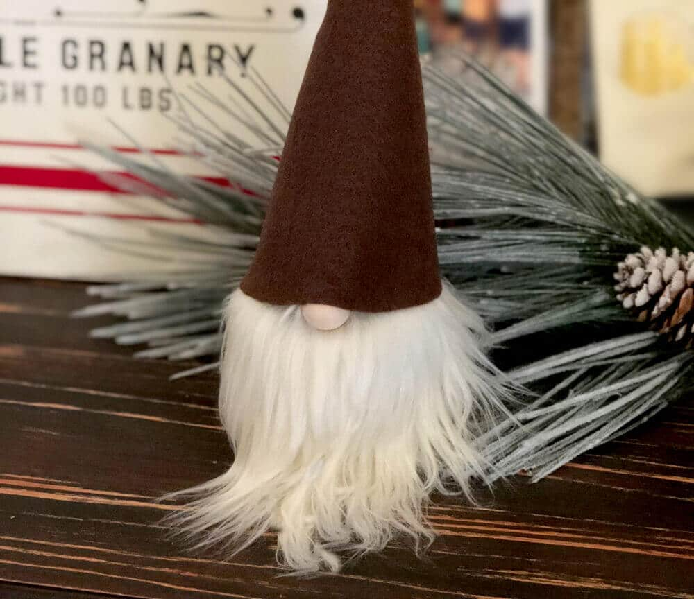 No Sew Gnome Simple Tutorial - Parties With A Cause