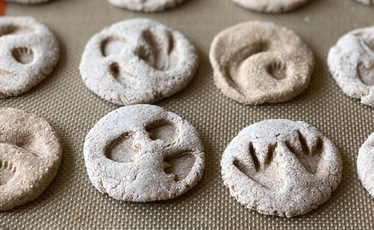 Dinosaur fossils for kids in salt dough