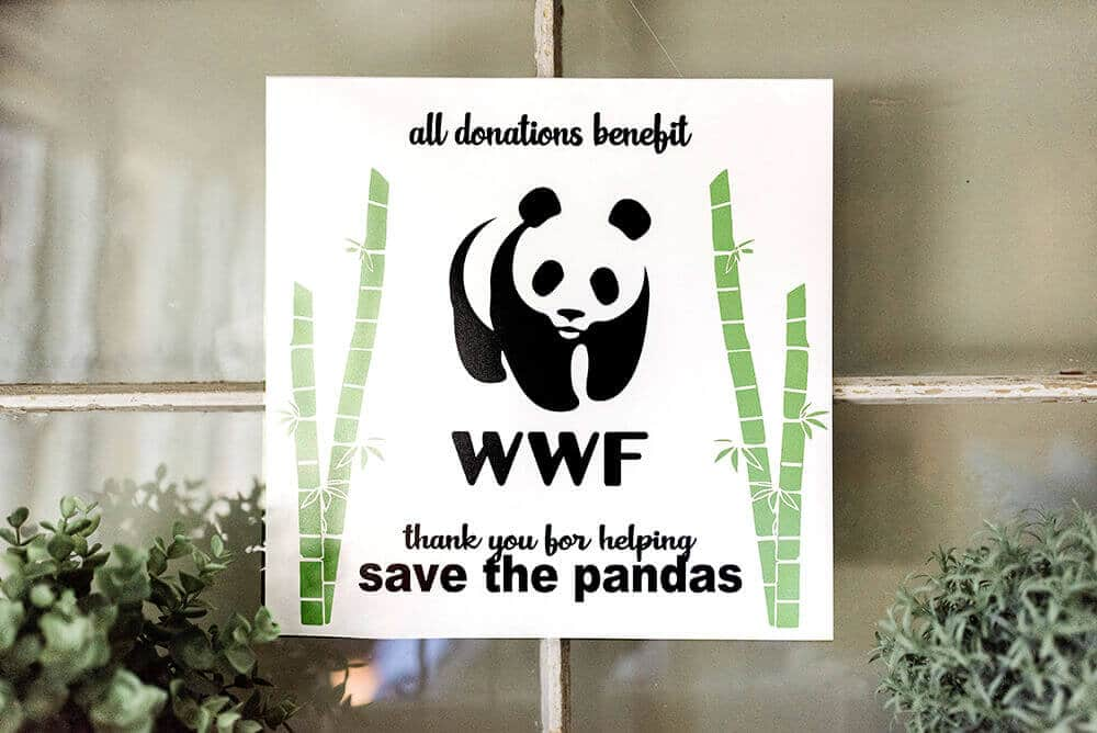 Party Like a Panda and donate to the WWF