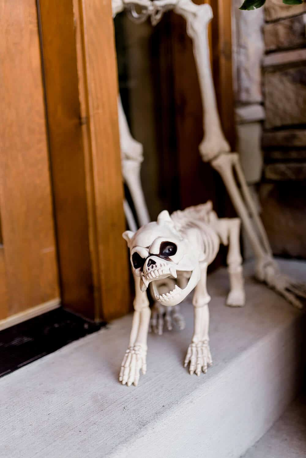 Skeleton guard dog Halloween front porch decoration