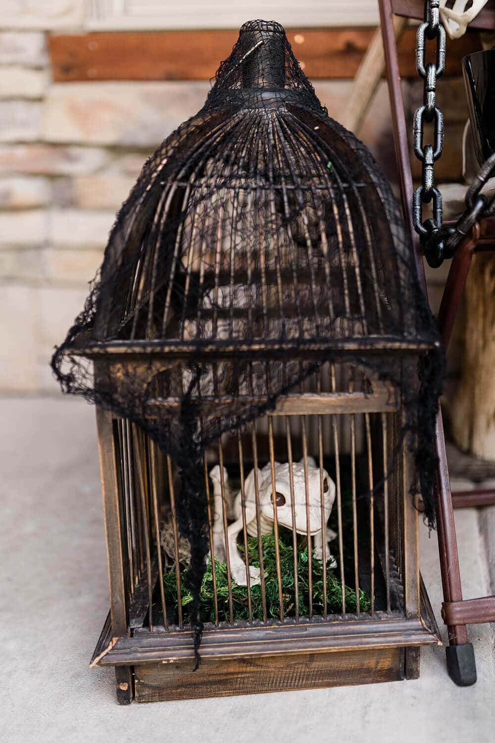 Caged Skeleton frog halloween front porch decor