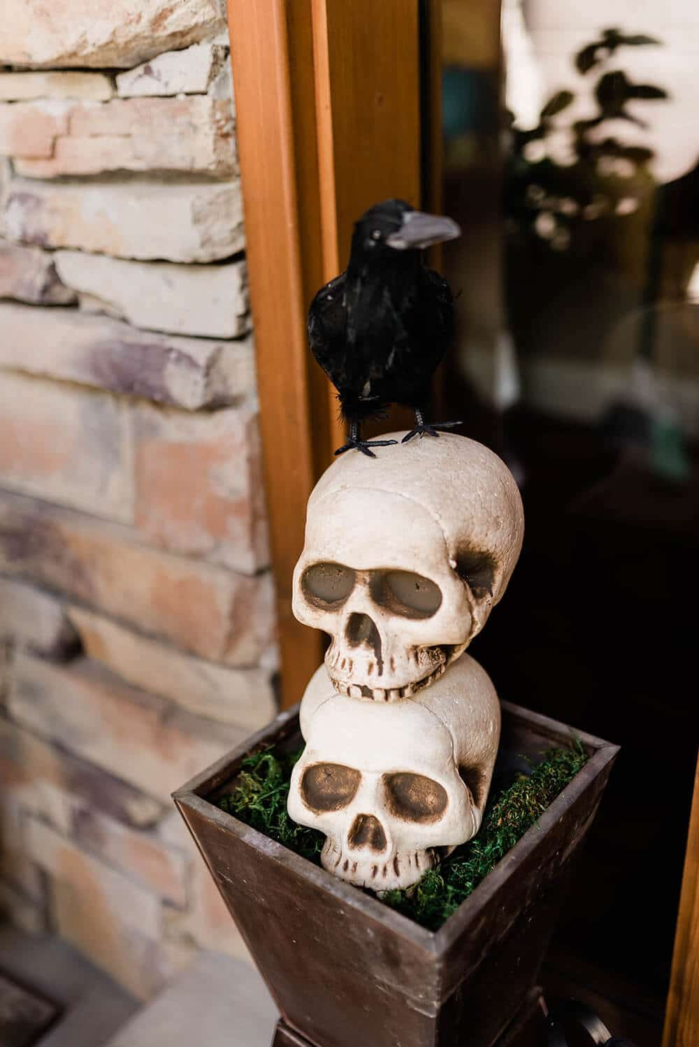 Raven skull topiary front porch decoration