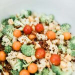 Healthy Dinosaur pasta salad with veggies, cheese, and bacon