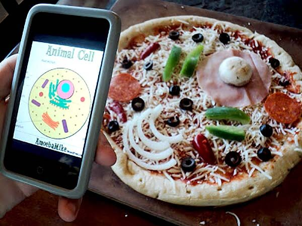 Animal cell pizza kitchen science