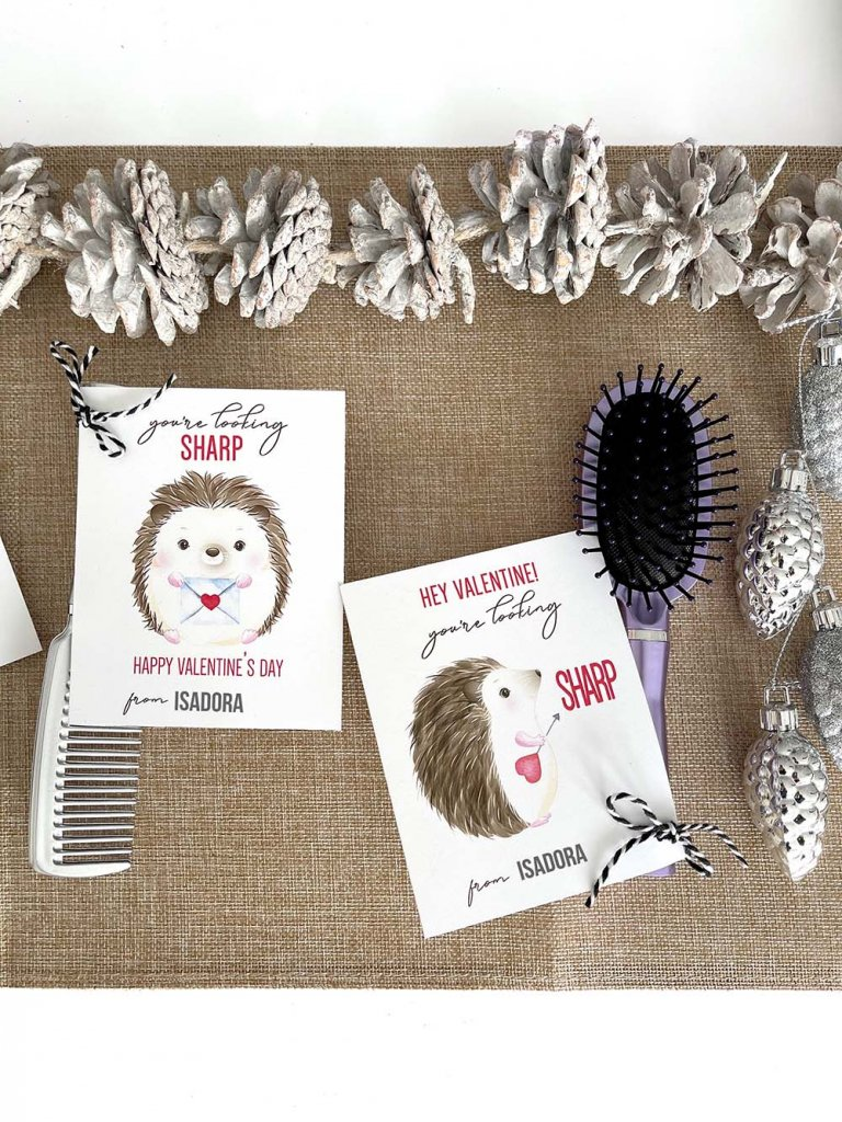 Hedgehog You're Looking Sharp Valentine card with brush gift